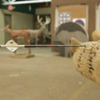 3D Range Open Shooting - Booking
